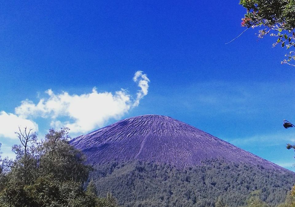 4D3N : Semeru mount tour from bromo area