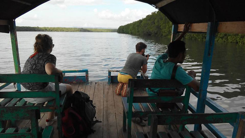 3-Days Tour ,  From Banyuwangi city – Alas Purwo National Park – Sukamade Turtle-Spawning Ground (Merubetiri National Park) –                       back to city. 3D/2N