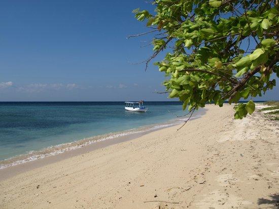1 Day tour: from Banyuwangi city -Tabuhan island – Rumah apung Under water – songgon village (rafting)