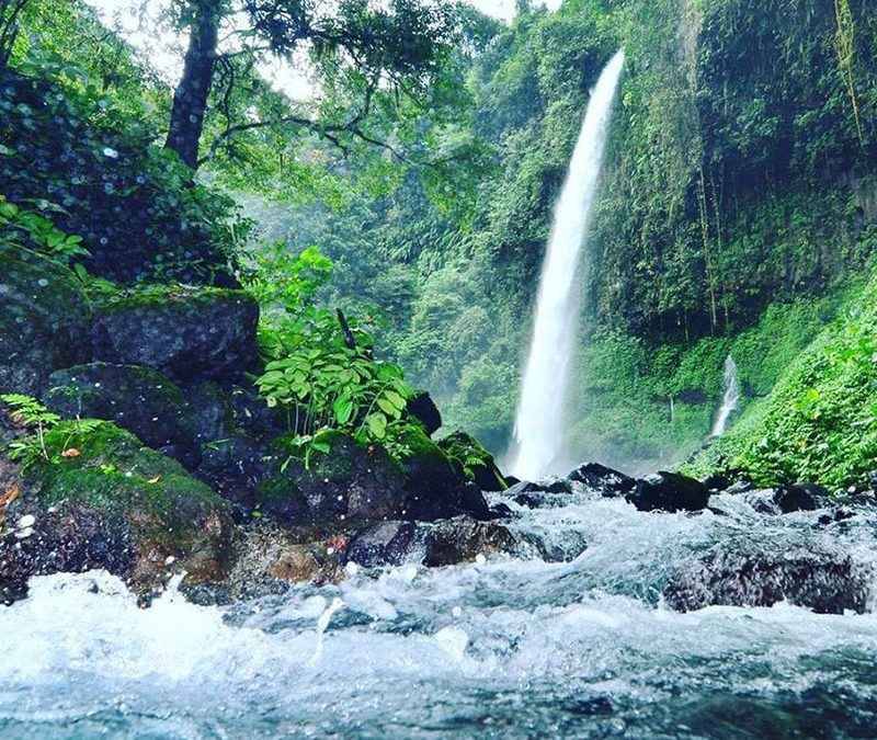 4 Days tour:  Telunjuk raung water fall – rafting in songgon – stay at night in pines forest  –                           Purwo National Park – go to rajegwesi village (raflesia home stay) – green bay –                         Sukamade Turtle- Spawning Ground (Merubetiri  National Park) 4D/3N