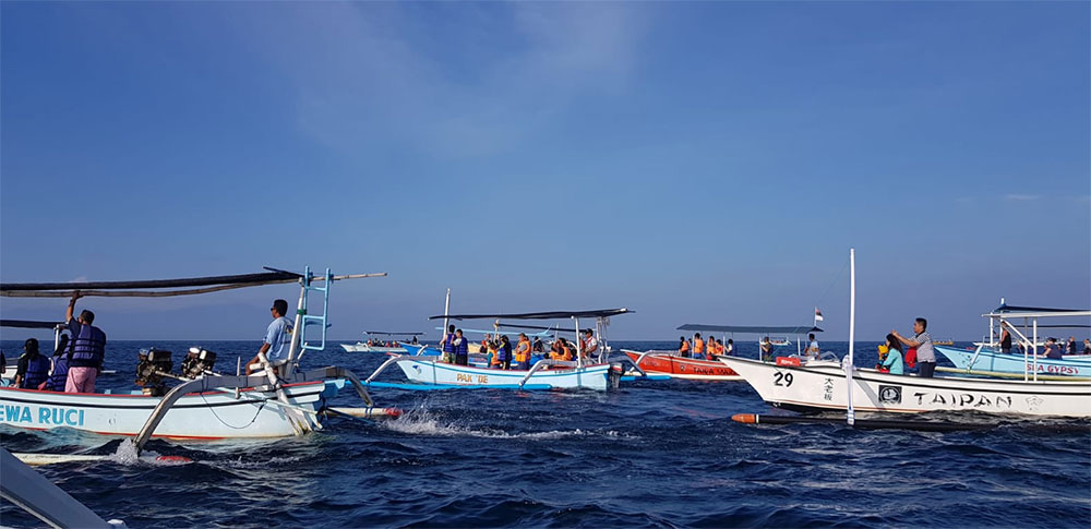 FROM GILIMANUK HARBOR GO TO MENJANGAN ISLAND ( SNORKELING PACKAGE ) and TRANSFER TO UBUD. (3D/2N)